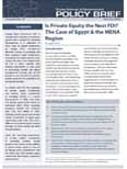 Is Private Equity the Next FDI? The Case of Egypt & the MENA Re...